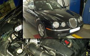 Jaguar w gazie